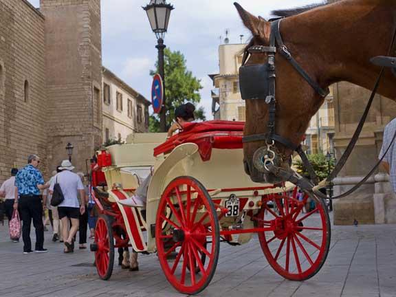 Palma-de-Mallorca-1020.jpg