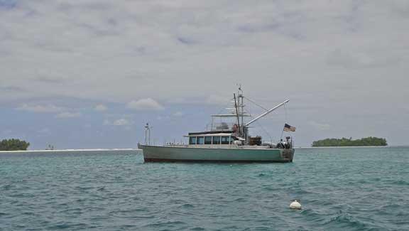 Sarah-Sarah-Paylmyra-Hawaii-12.jpg