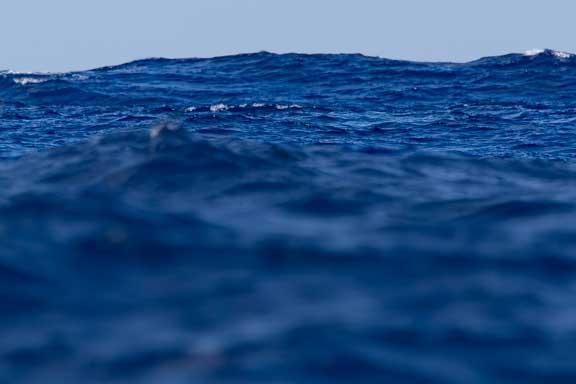 Nice-day-waves-101.jpg