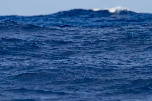Nice-day-waves-102.jpg