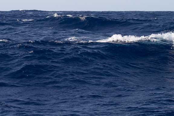 Nice-day-waves-121.jpg