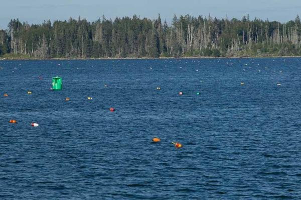 Round Pond Maine 103
