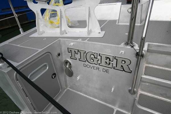 FPN 64 5 Tiger Ext details 2 9